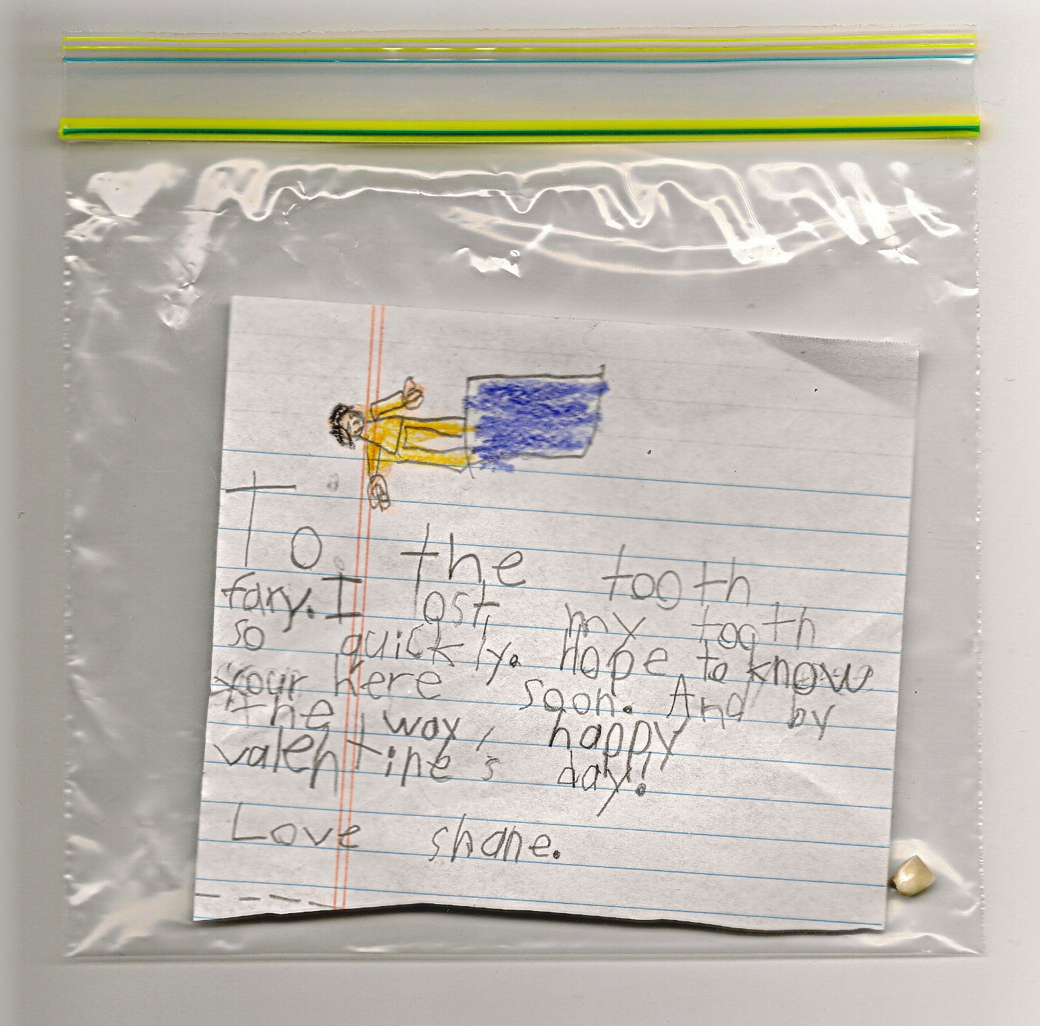 Shane's letter to the Tooth Fairy